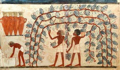 geroglifici vino