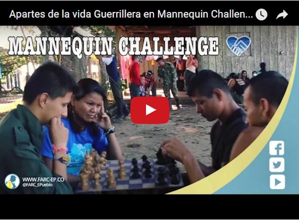 El Mannequin Challenge de los guerrilleros de las FARC
