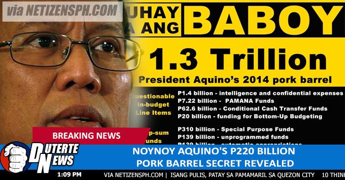 p104 billion pork barrel