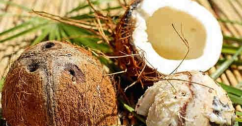 Coconut Milk Recipes For Your Hair & Skin