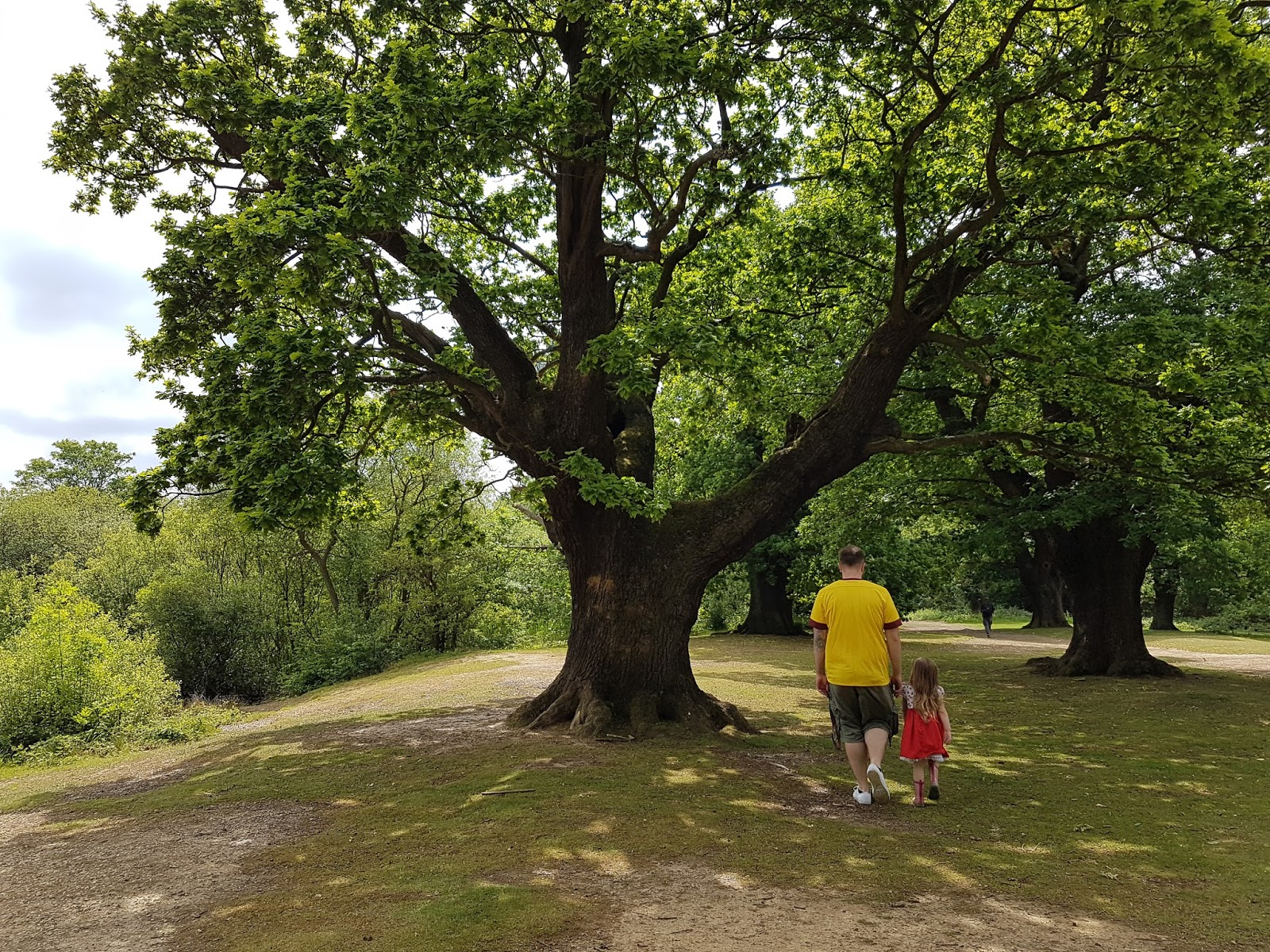 family walk in epping forest