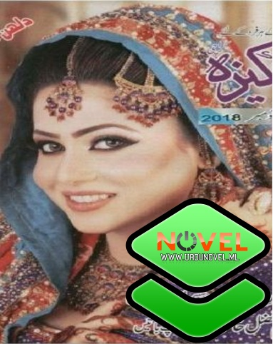 Pakeeza Digest August 2018 | Online reading Pakeeza digest 2018 download in pdf