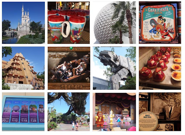 Walt Disney World Multiple Pictures