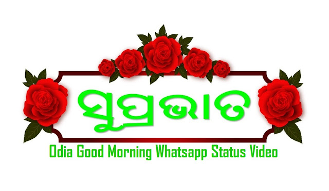 odia good morning whatsapp video, odia good morning whatsapp video download  , odia good morning whatsapp , odia good morning whatsapp video , odia good morning whatsapp status video , odia good morning whatsapp video download Good Morning Message in Odia For WhatsApp. WhatsApp Video For Odia People