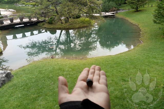 Canada-Quebec-Montreal-jardin-botanique-jardin-japonais-geocache
