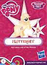 My Little Pony Wave 16B Fluttershy Blind Bag Card