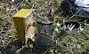 Τι υλικά βάζουμε στο καπνιστήρι για να ηρεμούν περισσότερο οι μέλισσες; Πως ελέγχουμε τη βαρρόα με χρήση καπνού;