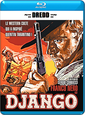Django 1966 Hindi Dual Audio 720p BRRip 900mb