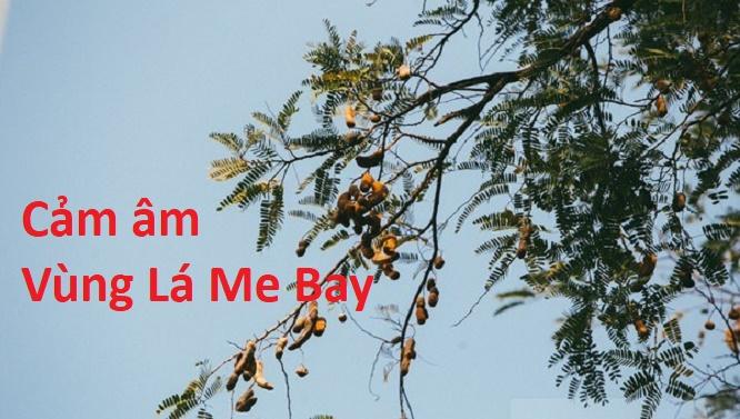 CAM AM VUNG LA ME BAY