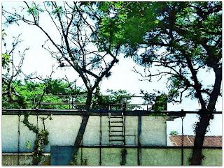 Falso Mirante do DMAE - Vila Assunção, Porto Alegre