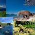 Keunikan dari Pulau Komodo