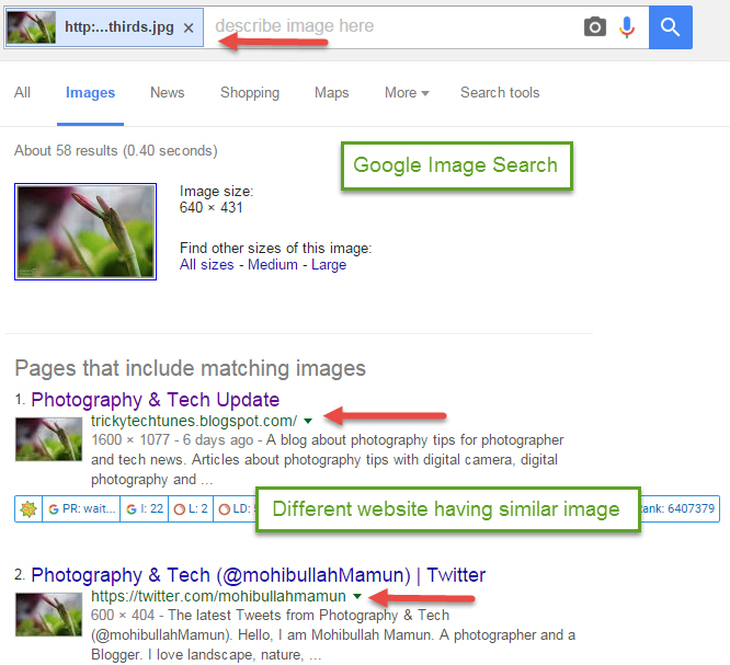 Google Image Search tips and tricks