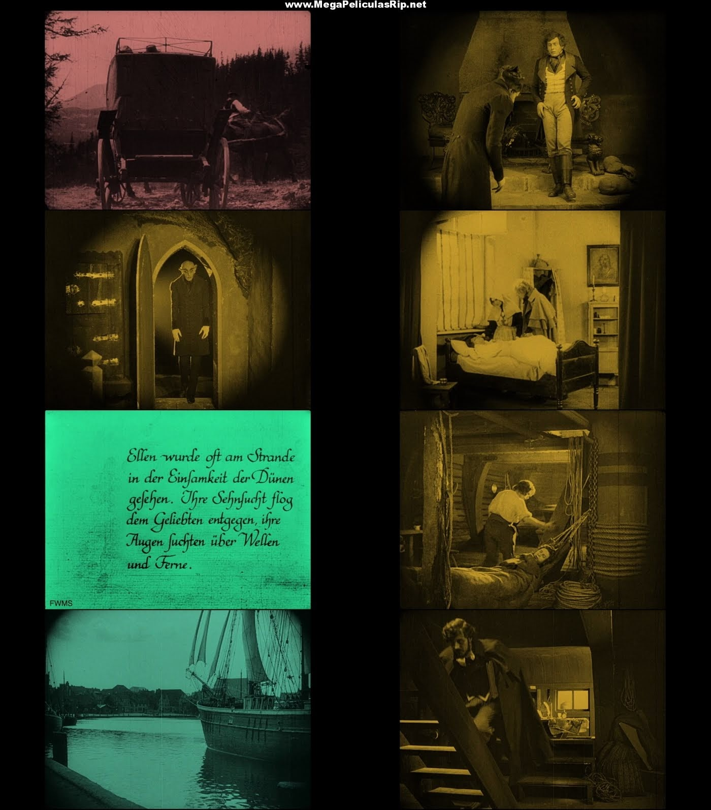 Nosferatu 1080p Latino