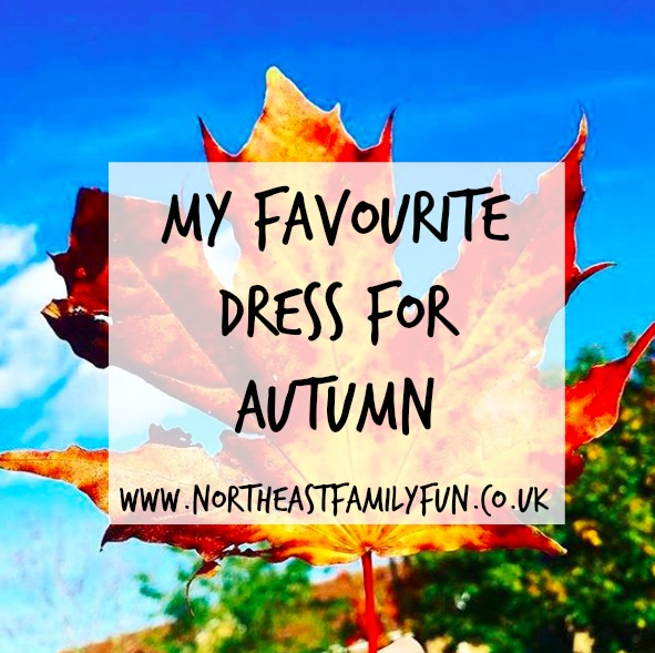 My Favourite Dress for Autumn | Pink Clove Review
