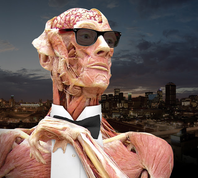 Body Worlds Vital - Johannesburg - The Life's Way