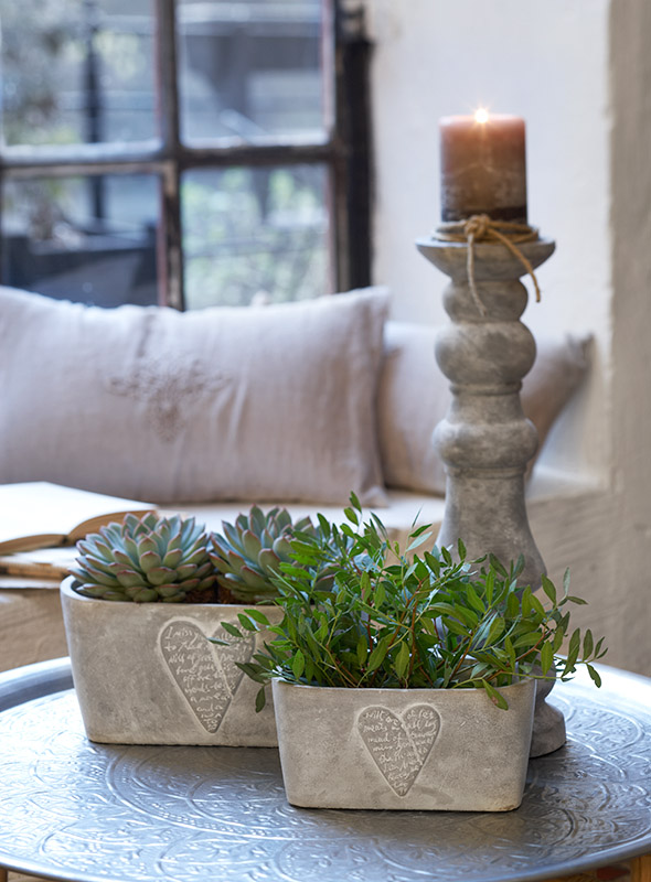 Perfect Home: LOVE IS IN THE AIR