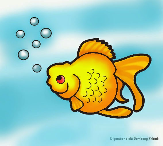 mewarnai binatang ikan maskoki belajar menggambar dan