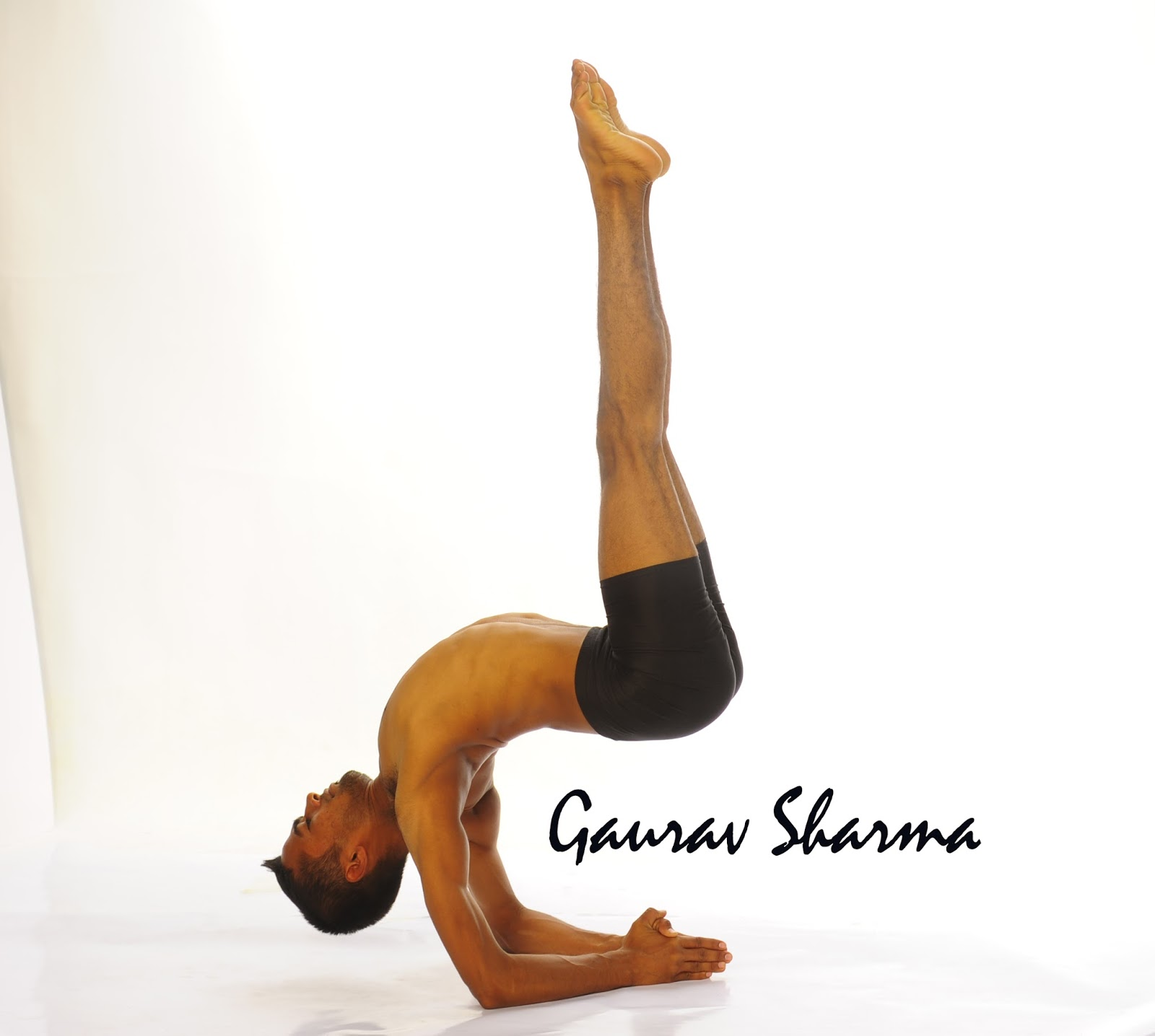 Chair Yoga Poses Welcome To Gaurav Yoga Blog Variation Of Forearm Balance