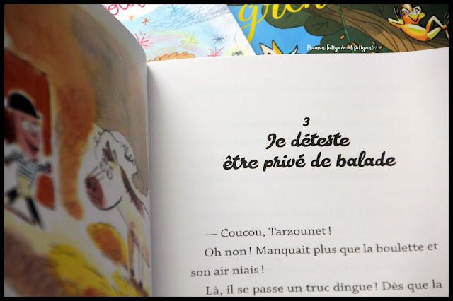 collection livres mini poulpe poule fiction