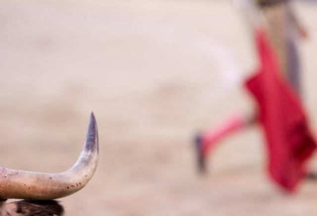 touradas na espanha vergonha para a humanidade