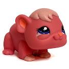Littlest Pet Shop Multi Pack Guinea Pig (#1773) Pet