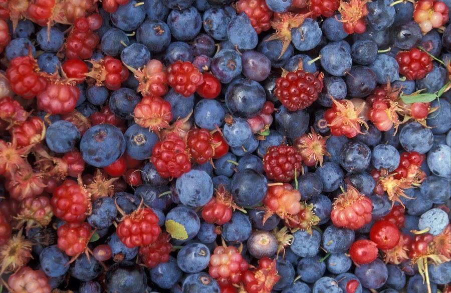 frutas de calorías reducidas