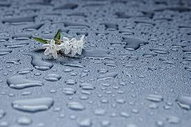 Contoh Puisi Tentang Hujan Terbaru 2016