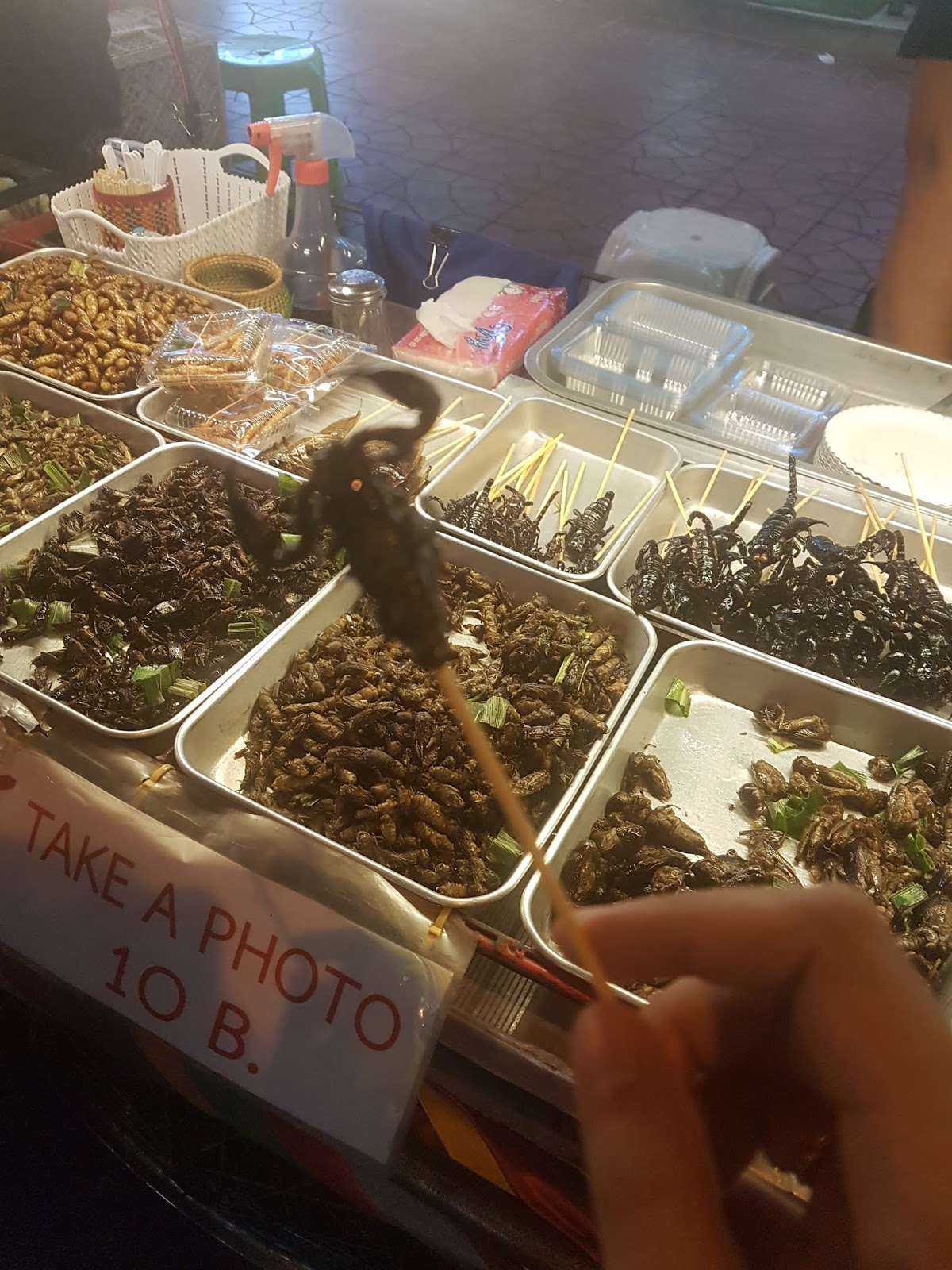 Eating bugs (scorpions) in Bangkok Thailand | Ummi Goes Where?