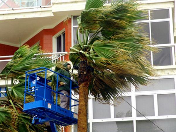 Por viento quedan mañana miércoles, 28 febrero, suspendidas las clases en Gran Canaria, Tenerife, La Palma, El Hierro y La Gomera / Fotógrafo: Jose Luis Sandoval