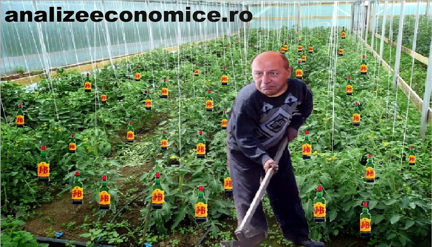 Viitoarea carieră a lui Traian Băsescu