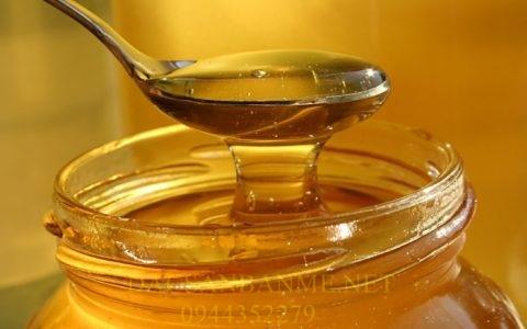 mật ong kỵ cái gì