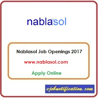 Nablasol Hiring Freshers Social Media Intern Jobs in Delhi Apply Online