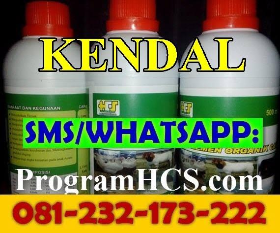 Jual SOC HCS Kendal