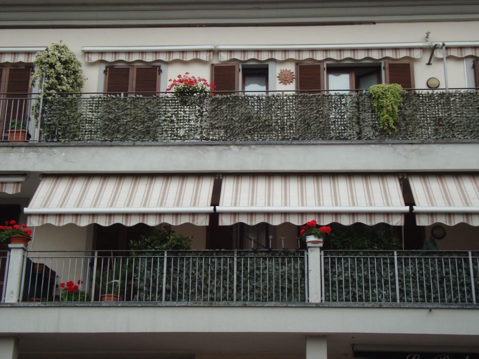 Un piccolo giardino in citt sempreverde sempreorribile for Siepi artificiali per balconi