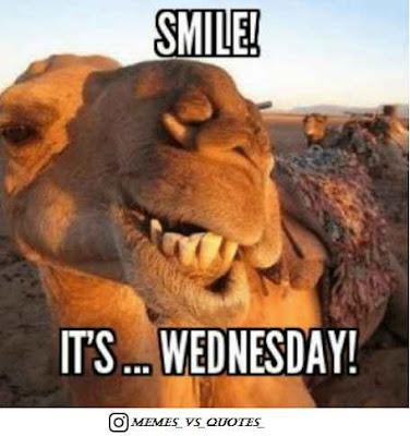 Wednesday Smile