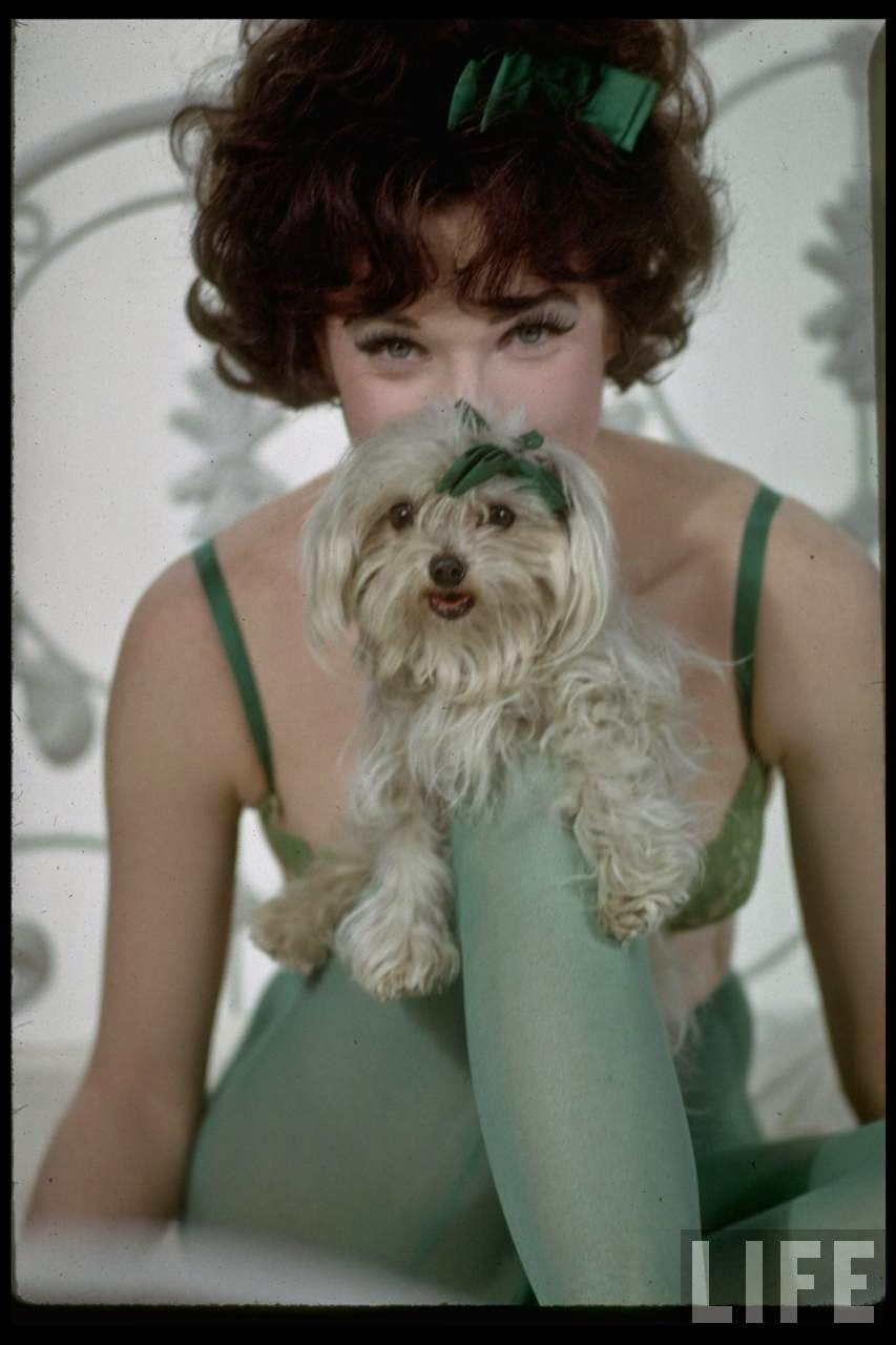 IRMA LA DOUCE (1963) – Blu-Ray Review – ZekeFilm