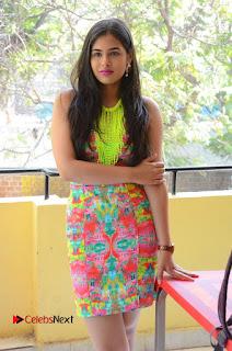 Telugu Actress Prasanna Stills in Short Dress at Inkenti Nuvve Cheppu Press Meet Stills  0027.JPG