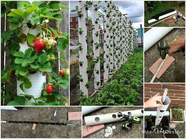 DIY Vertical Gardens 3