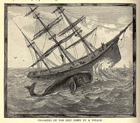 Painting showing the smashing of the ship Essex by a whale