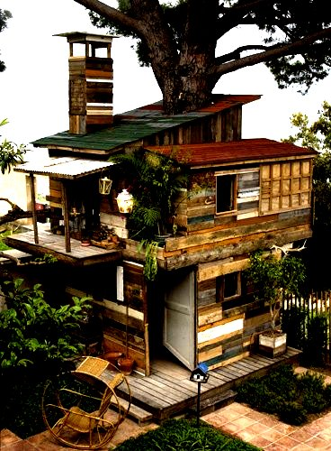The Flying Tortoise Tiny Tempting Treehouses