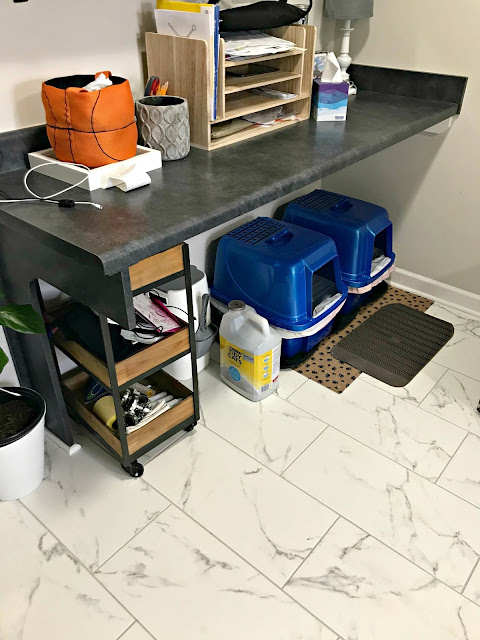 Best litter boxes with lids