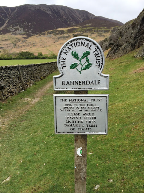 Rannerdale Knotts and a million Bluebells - Sunday 24 May 2015