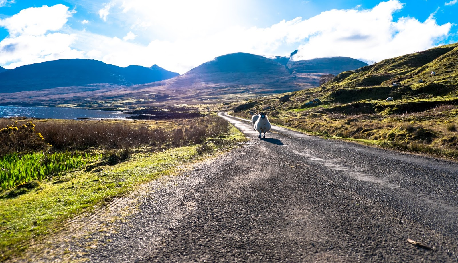 From Highlands to Islands — 10 Unconventional Reasons to