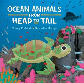 Bea's Book Nook, Review, Ocean Animals from Head to Tail, Stacey Roderick, Kwanchai Moriya