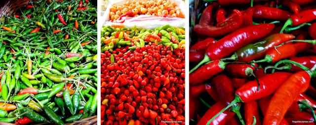 Pimentas naCeasinha de Salvador: malagueta, biquinho e dedo de moça