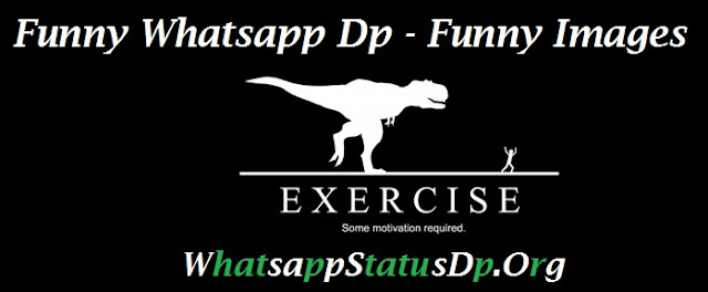 funny-best-whatsapp-dp-collections-free-download