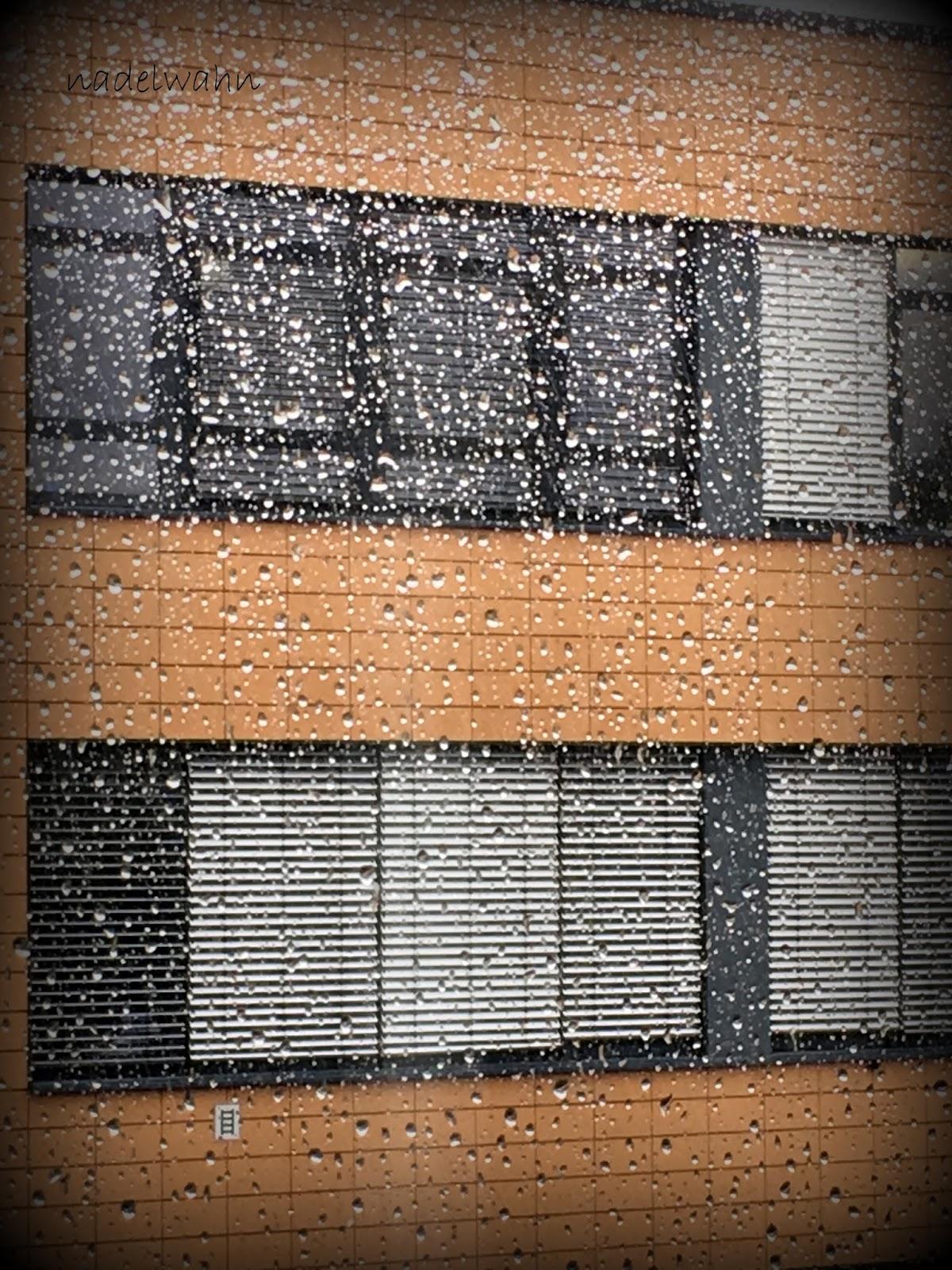 Nadelwahn for Fenster nass