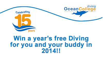 Dive for Free in 2014