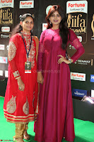 Monal Gajjar in Maroon Gown Stunning Cute Beauty at IIFA Utsavam Awards 2017 077.JPG