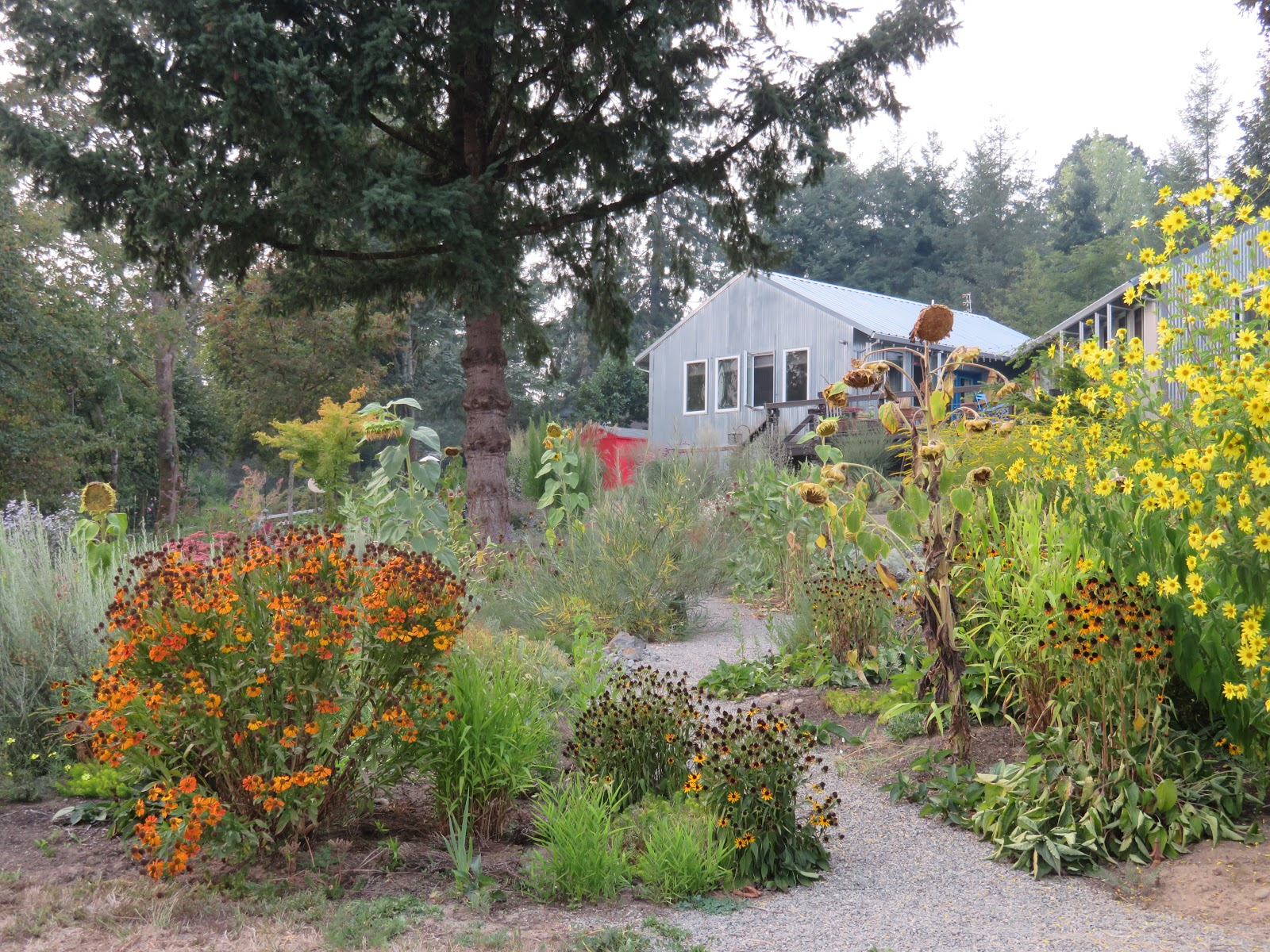 The End of Summer at Chickadee Gardens